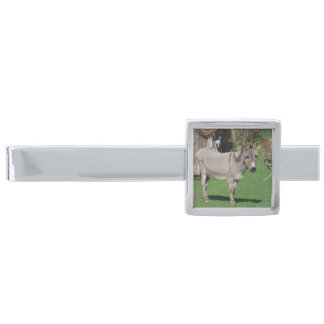 Rural Still Life With Donkey Silver Finish Tie Clip