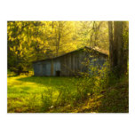Rural Tennessee Spring Morning Light Post Cards