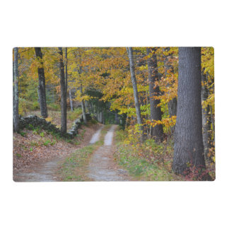 Rural Vermont Views Placemat Laminated Placemat