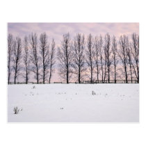 Rural winter landscape postcard