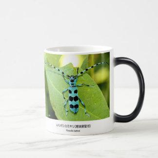 ruriboshikamikirimushi and Blue Longhorn Beetle wi Magic Mug
