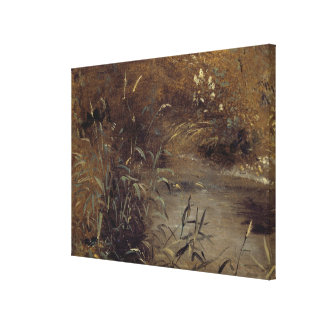 Rushes by a Pool, c.1821 (oil on paper on board) Canvas Print