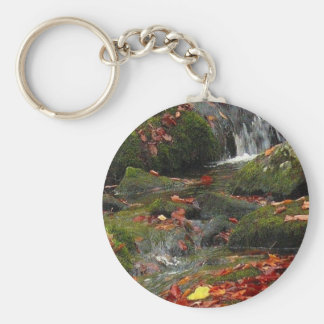 rushing autumn brook and colored leaves basic round button keychain