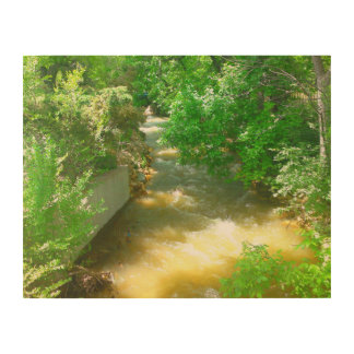 Rushing River under the Trees Wood Wall Decor