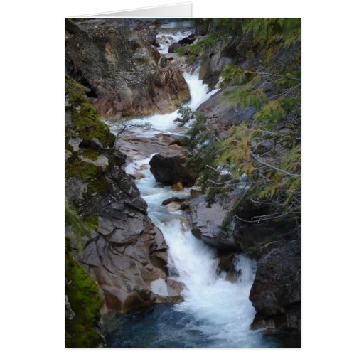 Rushing Waters Fry Creek, British Columbia, Canada Greeting Card
