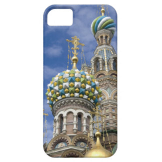 Rusia, St Petersburg, Nevsky Prospekt, iPhone 5 Carcasas