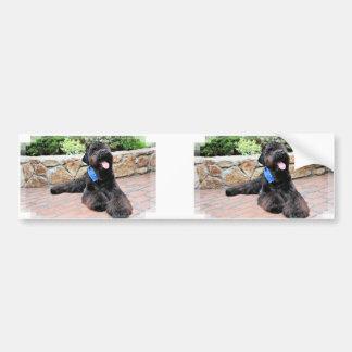 Ruso negro Terrier - Vader Pegatina Para Auto