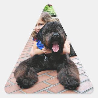 Ruso negro Terrier - Vader Pegatina Triangular