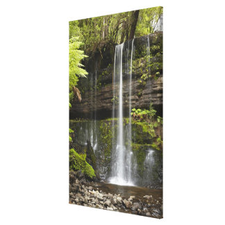 Russell Falls, Mount Field National Park, Canvas Print