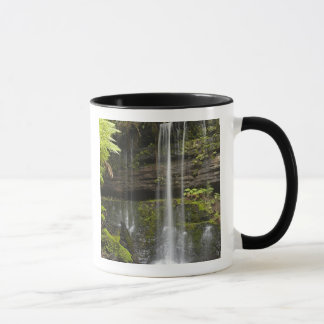 Russell Falls, Mount Field National Park, Mug