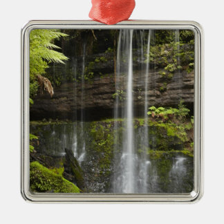 Russell Falls, Mount Field National Park, Christmas Tree Ornaments