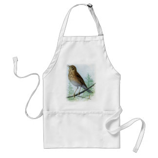Russet-backed Thrush Adult Apron