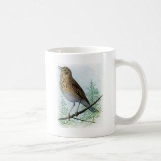 Russet-backed Thrush Coffee Mug