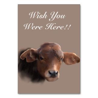 Russet Brown Cow Portrait Card