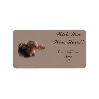 Russet Brown Cow Portrait Label