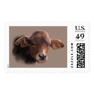 Russet Brown Cow Portrait Postage Stamp
