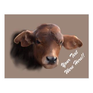 Russet Brown Cow Portrait Postcard