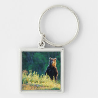 Russia, Kamchatka, grizzly of Kroska Silver-Colored Square Keychain