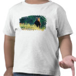 Russia, Kamchatka, grizzly of Kroska T Shirts