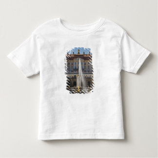 Russia, Saint Petersburg, Peterhof, Grand Palace 4 Toddler T-shirt