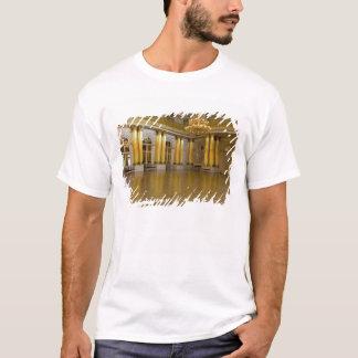 Russia, St. Petersburg, The Hermitage (aka 3 T-Shirt