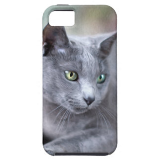Russian Blue iPhone 5 Cover