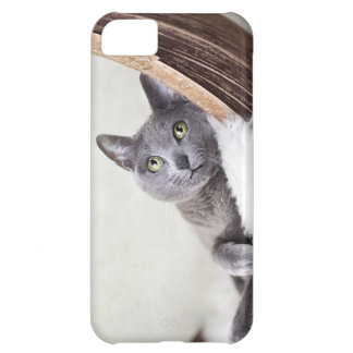 Russian Blue iPhone 5C Cover
