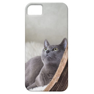 Russian Blue iPhone 5 Covers