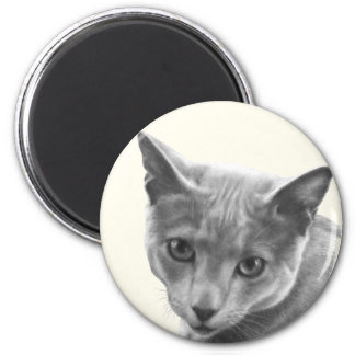 Russian Blue Cat 2 Inch Round Magnet