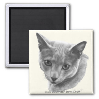 Russian Blue Cat 2 Inch Square Magnet