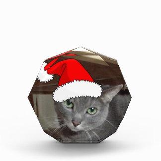 Russian Blue Cat Christmas Award