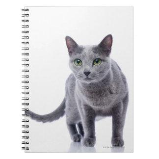 Russian Blue Cat Note Book