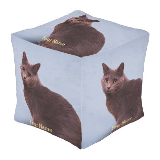 Russian Blue Cat Staring Outdoor Pouf