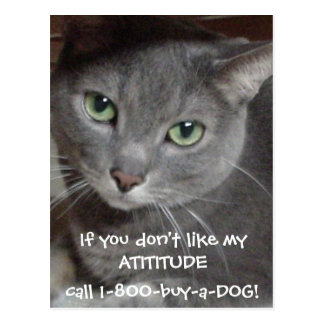 Russian Blue Gray Cat Attitude Humor Postcard