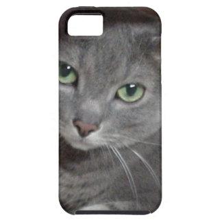 Russian Blue Gray Cat iPhone SE/5/5s Case