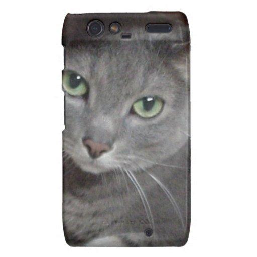 Russian Blue Gray Cat Motorola Droid RAZR Covers