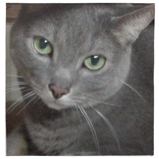 Russian Blue Gray Cat Napkin
