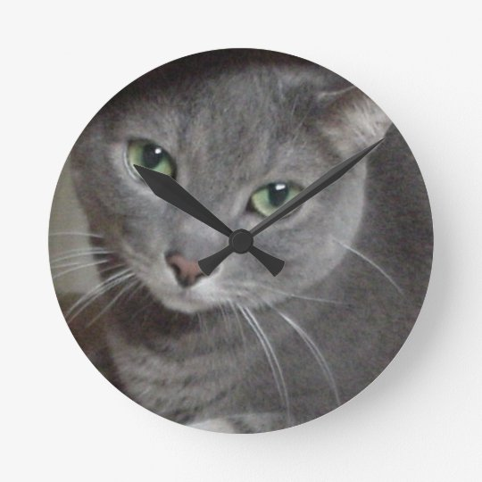 Russian Blue Gray Cat Round Clock