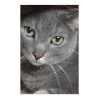 Russian Blue Gray Cat Stationery