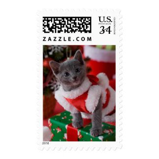 Russian Blue Kitten and Christmas 2 Postage
