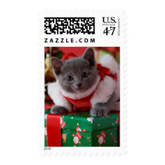 Russian Blue Kitten and Christmas Postage