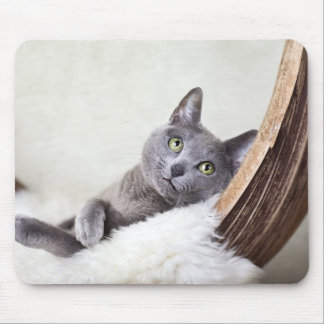 Russian Blue Mouse Pad