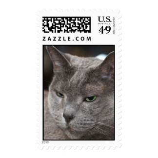 Russian blue stamp