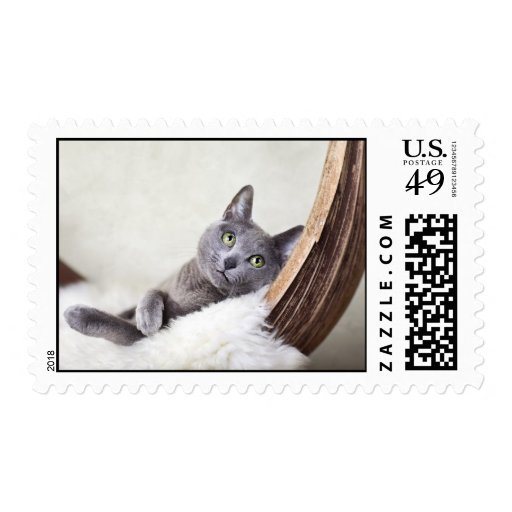 Russian Blue Stamps