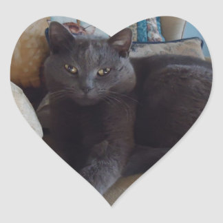 Russian Blue Stickers