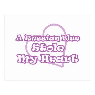 Russian Blue Stole My Heart Postcard