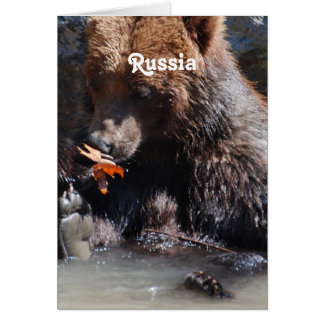 Russian Brown Bear Stationery Note Card