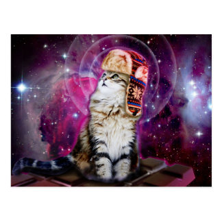 russian cat in space postcard