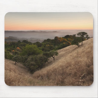 Russian Ridge in Summer Mouse Pad