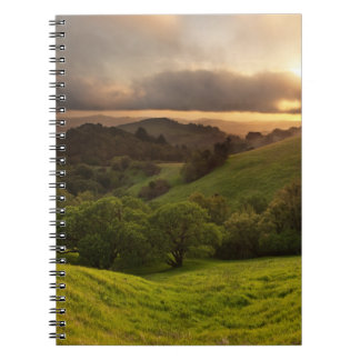 Russian Ridge on Easter Sunday Spiral Notebook
